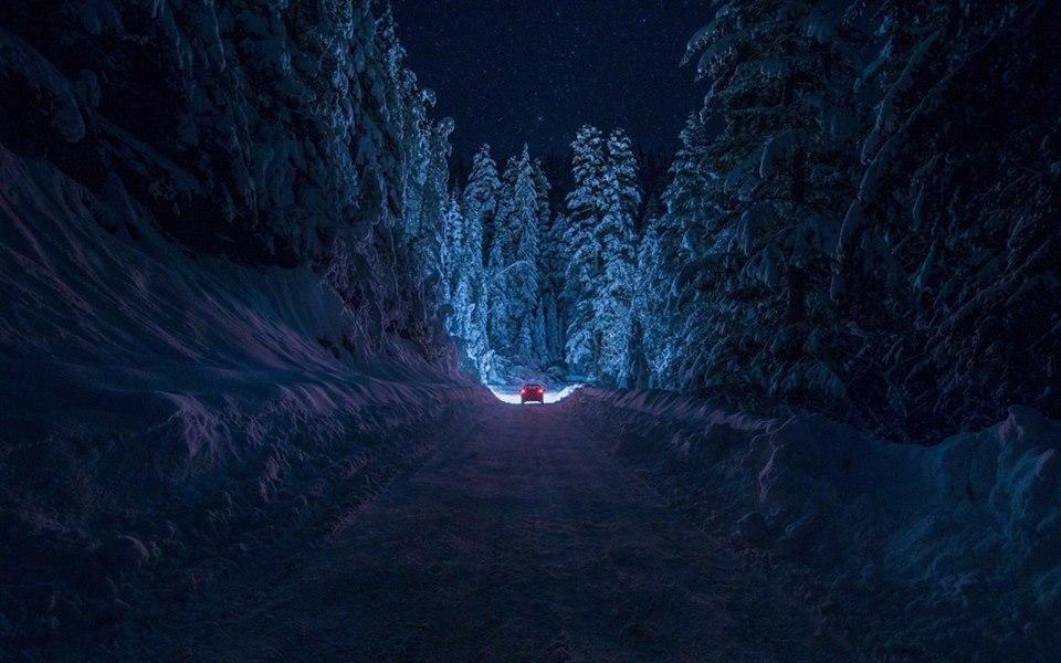 дорога_в_ночь